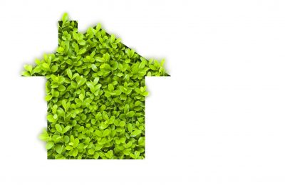 How to Make Your Home Environmentally Friendly